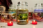 02-23-2014_candle collection-015