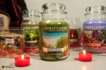 02-23-2014_candle collection-016
