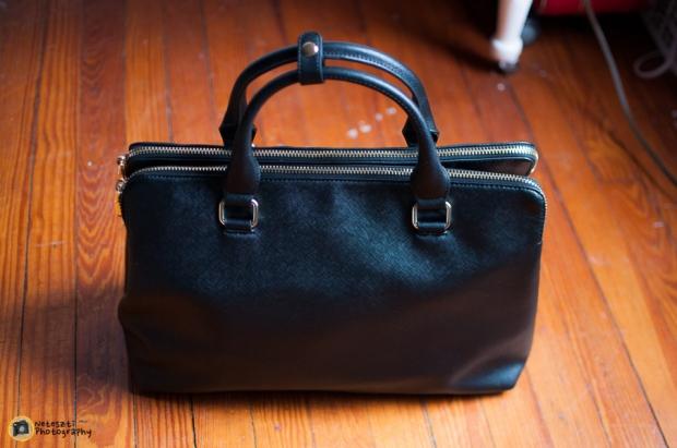 03-27-2014_Zara bag-001