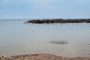 04-12-2014_Outing at Presque Isle-057