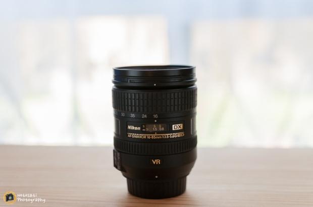 05-29-2014_Nikon 16-85 lens-029